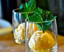 Mandarinen-Blutorangen-Sorbet – Teil 5 Neptuns Festtagsmenü