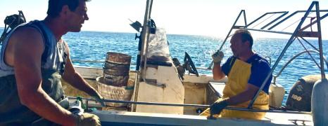 Sepia fischen mit Paolo